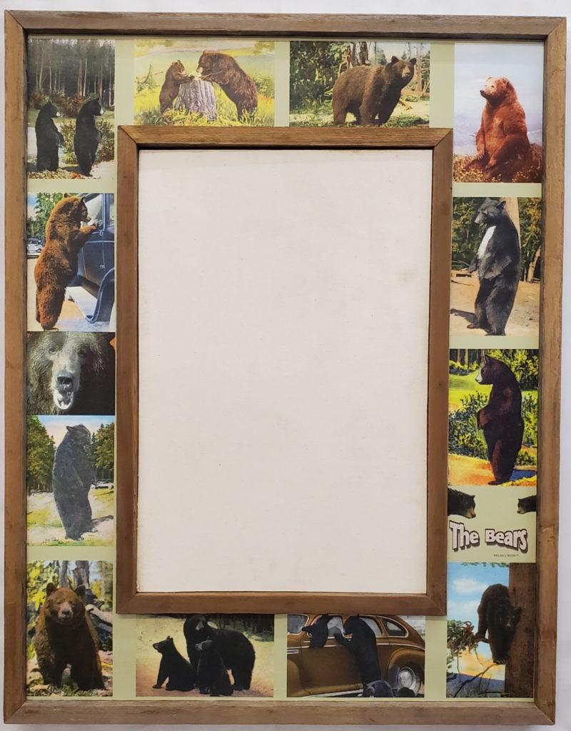 Bear collage-1